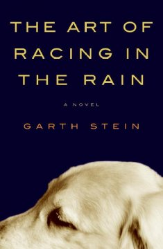The art of racing in the rain : a novel by Stein, Garth.